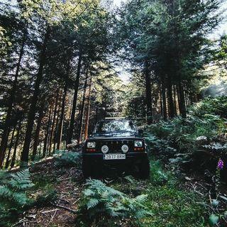 Marcos Ferreira Fotografia
